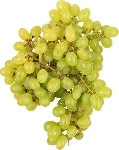 Виноград  белый без косточек