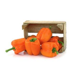 Перец оранжевый (лоток)