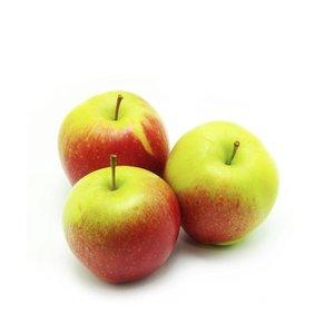 Яблоки Глостер
