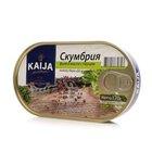 Скумбрия филе в масле с перцем ТМ Kaija (Кайджа)