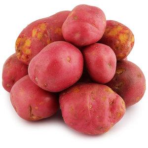 Картофель красный ранний