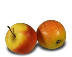 Яблоки медовые ТМ Агроном сад